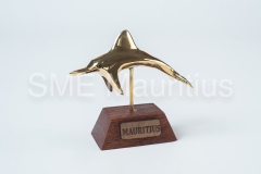 AF004-Dolphin-Mr-Alain-Firjhun-Tel-58659926-58647576-alainrajini700@gmail.com-1