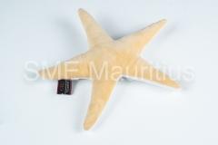 GV037-Gavik-Star-Fish-Plush-Gavik-Company-Ltd-Mr.Gabriel-Kamudu-Tel-4640329_52542480-gavikcoltd@gmail.com-2