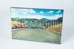 JM102-Canvas-Painting-Rectangle-Mrs-Jihane-Jamshed-Maudarbaccus-Tel-57140736-or-2630356-jihanemaud@gmail.com-
