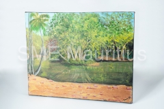 JM104-Canvas-Painting-Rectangle-Mrs-Jihane-Jamshed-Maudarbaccus-Tel-57140736-or-2630356-jihanemaud@gmail.com-