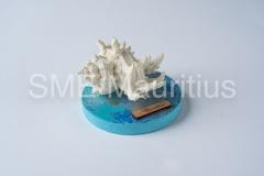 SZ029-Round-Base-with-Large-Shell-Casting-World-Ltd-Mrs-Sharanaz-Subratty-Tel-52539620-4633759-