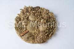 SZ037B-W-Round-Dec-Golden-Coral-Reef-Casting-World-Ltd-Mrs-Sharanaz-Subratty-Tel-52539620-4633759